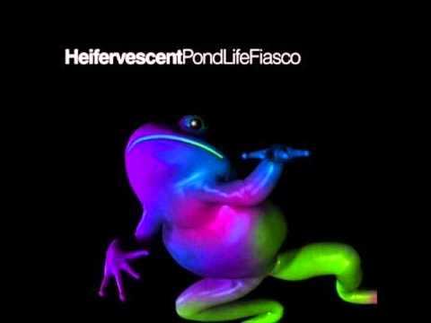 "Heifervescent - ""Deep Sea Diver"""
