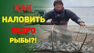 Рыбалка 2021 Как наловить ведро рыбы