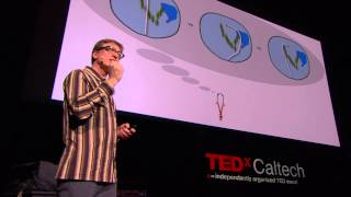 Can We Expand Our Consciousness with Neuroprosthetics?: Malcolm MacIver at TEDxCaltech