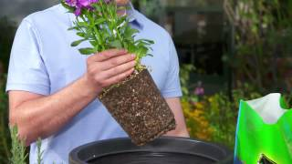 How to Pot a Pląnt with Use Potting Mix