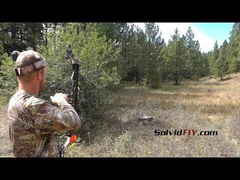 1 Arrow 2 Grouse - Archery Bird Hunting - Solvid FIY