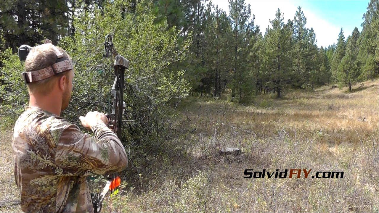 1 Arrow 2 Grouse, kinda - Archery Bird Hunting - Solvid