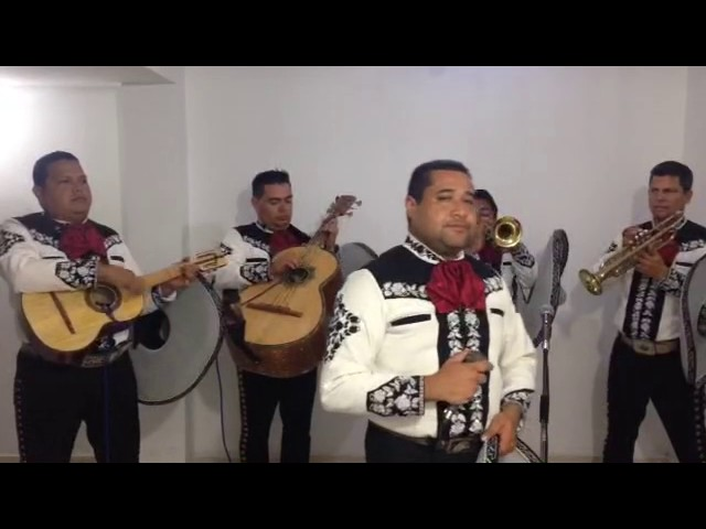 mariachi en barranquilla (a esa mujer) tequila show