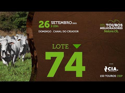 LOTE 74 - LEILÃO VIRTUAL DE TOUROS 2021 NELORE OL - CEIP