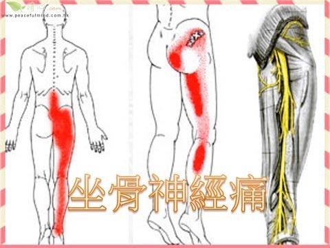 股關節對角線與直線振動手法 | Doovi