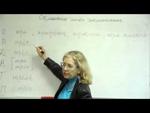 Русский язык. Склонение имен числительных