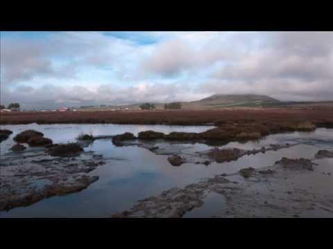 Highway 37 Wetlands Tour: San Pablo Bay National Wildlife Refuge