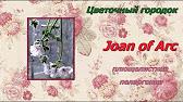 Фото и описание. Продажа и пересылка комнатных цветов по россии. Комнатные растения пеларгонии.