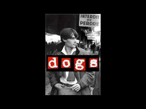 Dogs - Everything But Love (1983)