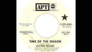 Lectric Woods - Time Of The Season (The Zombies Instrumental Cover)