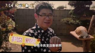 Neko Atsume House ☆ 下載次數突破2000萬風靡全球手機遊戲「貓咪收集」...