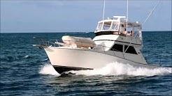 Viking Sportfish Convertible Open Bridge   SEA NOTE