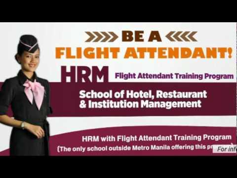 DMC's B.S. HRM 8+1 with Flight Attendant Training Program AVP (60s ...