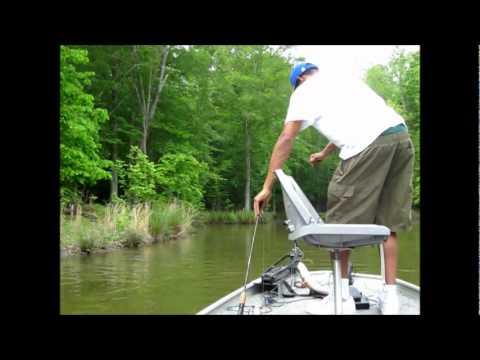 Bass fishing on randleman lake north carolina youtube for North carolina surf fishing license