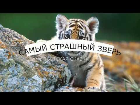 Издательство КАРО - учебная литература