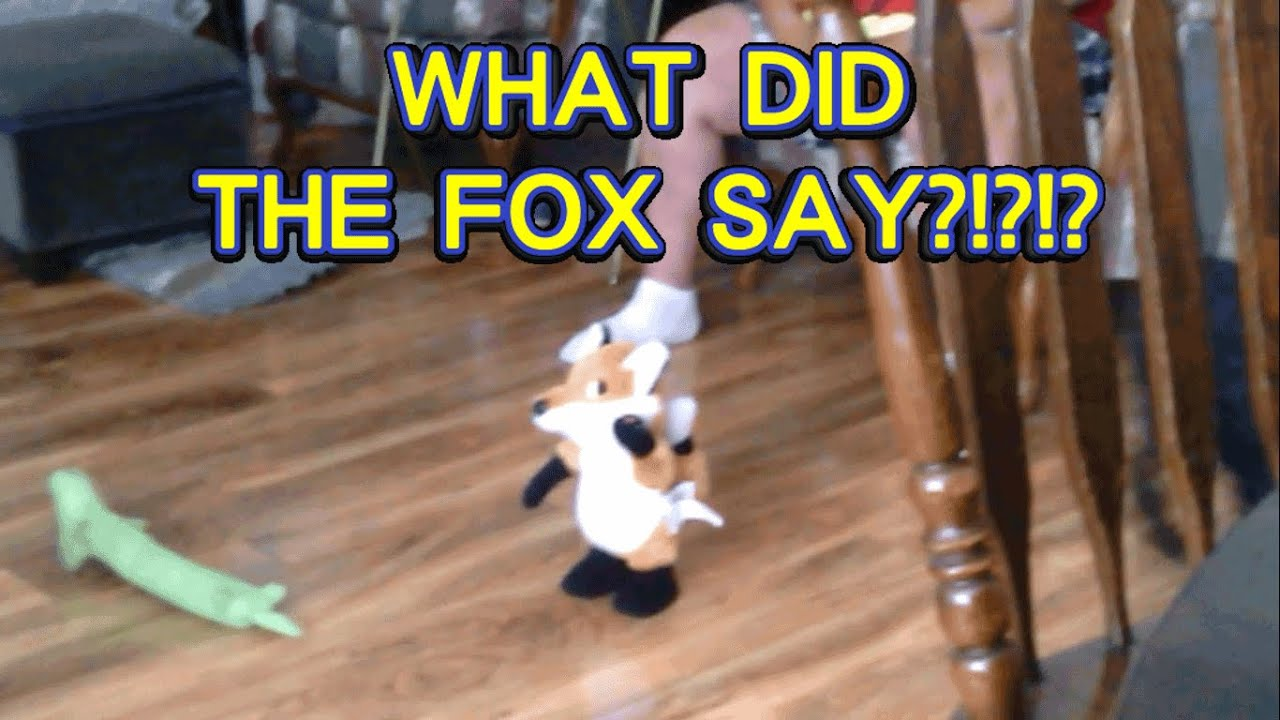WHAT DID THE FOX SAY?!?!? - YouTube - photo#4