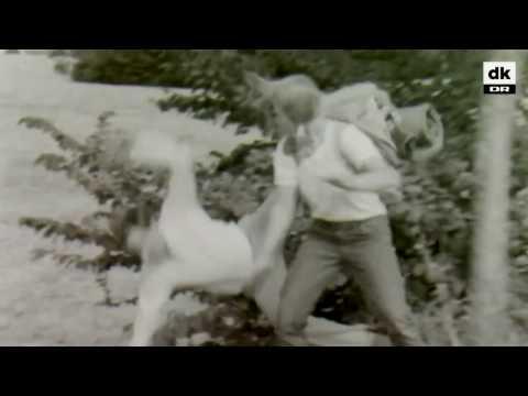 Badass danish girl 1969...wait for it.