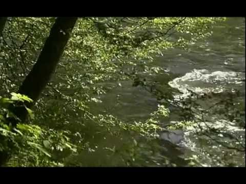 Secrets de Rivière