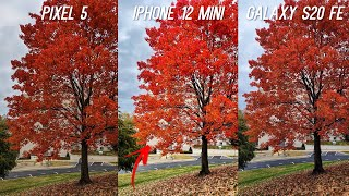 iPhone 12 Mini vs Pixel 5 vs Galaxy S20 FE Camera Comparison Test
