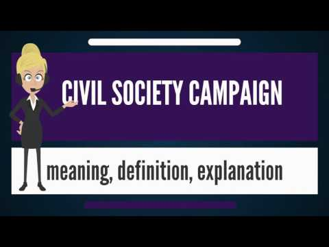 What is CIVIL SOCIETY CAMPAIGN? What does CIVIL SOCIETY CAMPAIGN mean?