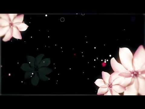 Flower background full hd - Wedding Background Video - Video HD free download thumbnail