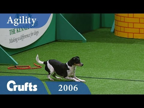 Agility Championship Final from Crufts 2006 | Crufts Dog Show