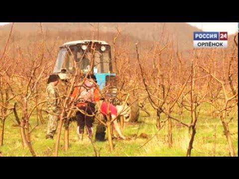 свинг знакомства Новомихайловское