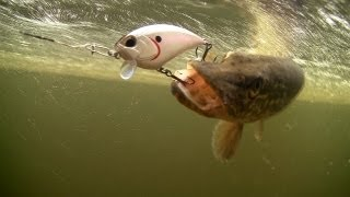 How to catch pike with DUO fishing lures for bass, muskie, perch. Рыбалка щука на воблер.