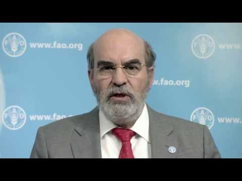 MSP Meeting opening - José Graziano da Silva, Director General, FAO