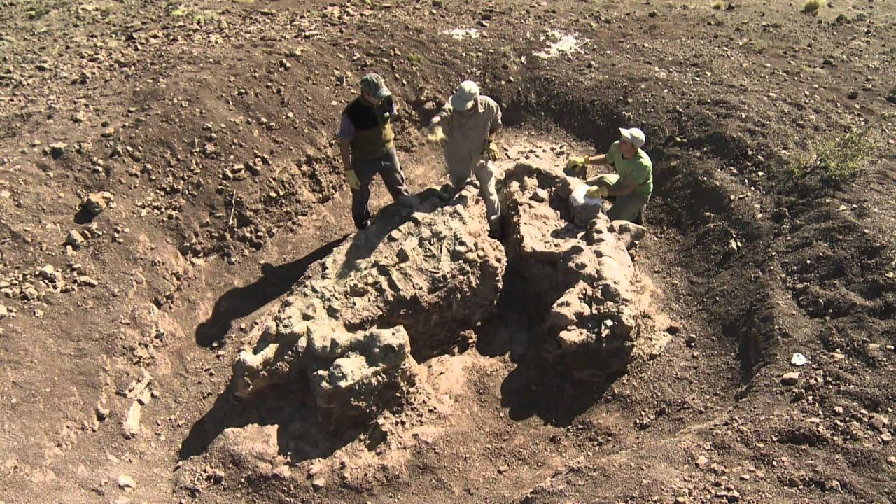 Paleontología: Huellas De El Tranquilo