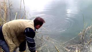 Turna balığı yakalanışı