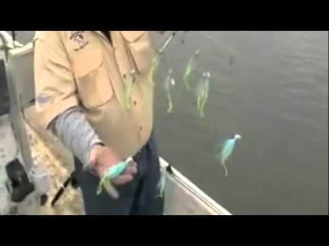 Striper Fishing With Umbrella Rigs