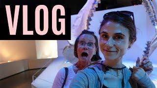 VLOG: MUSEUM & BAKING CHIA SEED CRACKERS| DR DRAY thumbnail