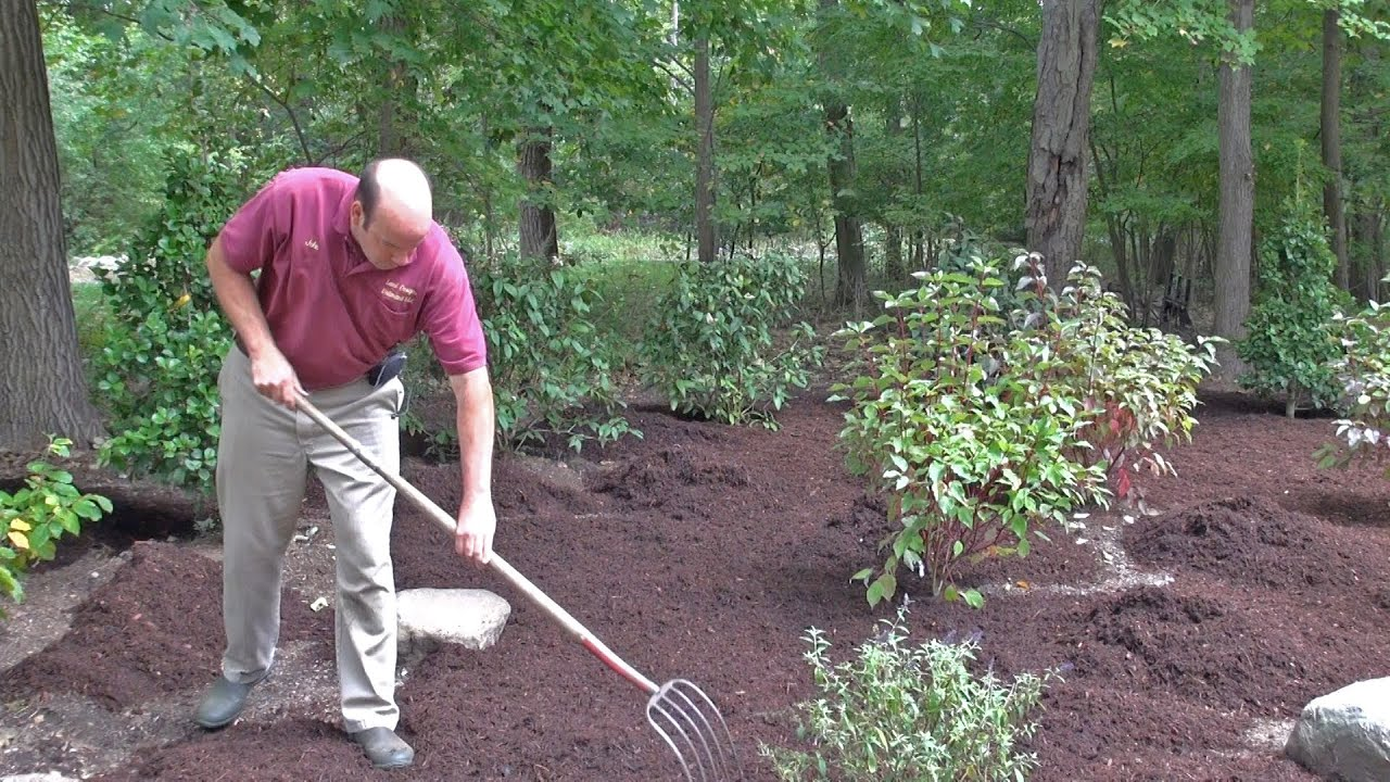 how to mulch a new landscape, Natural flower