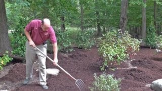 How to Mulch a New Landscape