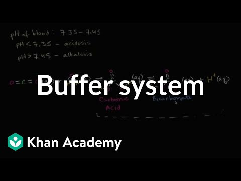 Introduction to buffers | Water, acids, and bases | Biology | Khan Academy