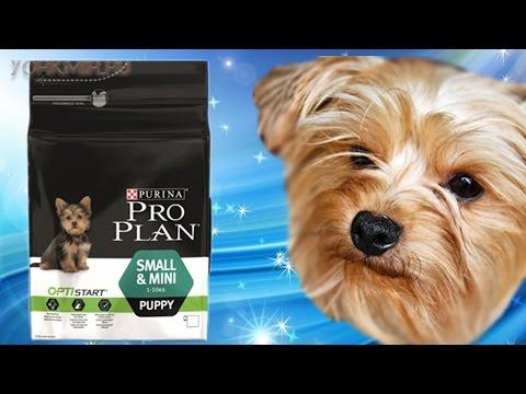 Корм для собак Pro Plan | Виды | Отзывы.