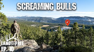 Screaming Bull Elk (INTENSE) | LOF3 Ep. 10