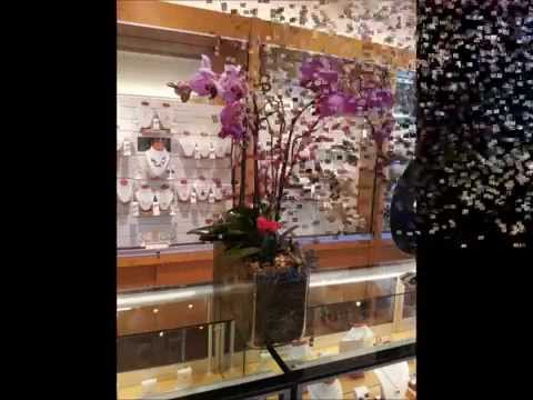 Sausalito Jewelers Orchid Masterpiece designed and made by Royal Fleur Florist - (415) 891-3140