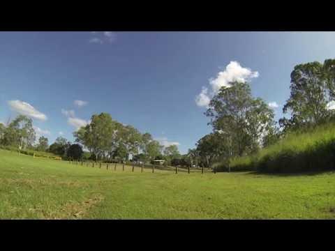 Calliope River Camping Ground, Calliope River, Near Gladstone, QLD