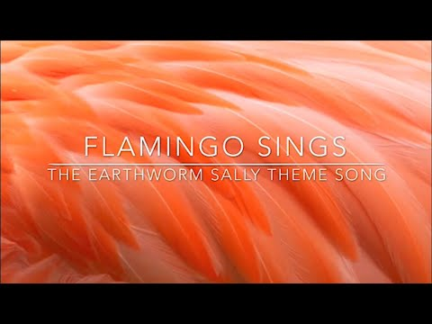Flamingo Sings-The Earthworm Sally Theme Song - YouTube