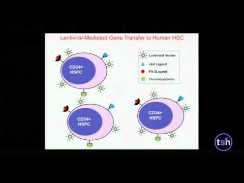 Keynote: Hematopoietic Stem Cell Gene Therapy