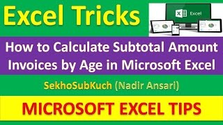 excel tricks how to calculate subtotal amount invoices by age in microsoft excel urdu hindi