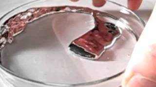 experiments with the liquid metal mercury V (feat. gallium)