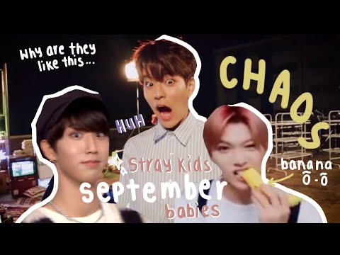 Things Stray Kids have done/said that shouldn't be real but are (September babies edition)
