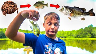 Kid Attempts Food Chain Fishing Challenge (Unexpected Catch!!)