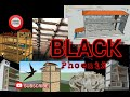 Sp Black Phoenix Original  Mp3 - Mp4 Download