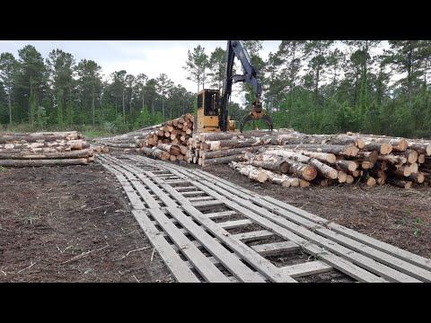 North Carolina logging- 500 acres