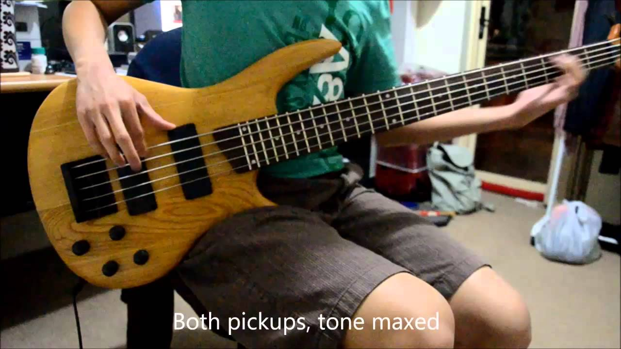 Diy kit 5 string bass demo part 1 of 2 youtube solutioingenieria Image collections