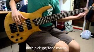 DIY kit 5 String Bass Demo (part 1 of 2)